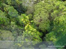 Fahrt im Skyrail Rainforest Cableway