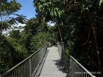 Mamu Forest Canopy Walkway