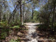 Burrum Coast Nationalpark