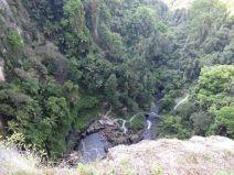 Blick nach unten bei den Purlingbrook Falls