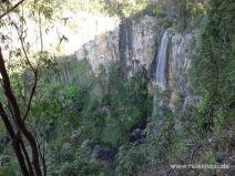 Purlingbrook Falls im Springbrook Nationalpark
