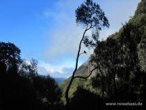 Aussicht von der Levada do Risco
