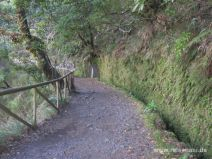 Levada do Risco