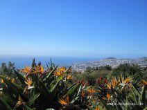 Aussicht vom botanischen Garten in Funchal