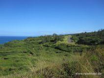 Wanderweg, Straße und Haleakala in der Ferne