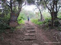 Beginn des Pipiwai Trails