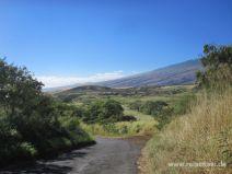 Straße südlich des Haleakala