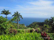 Aussicht im Garden of Eden auf Maui