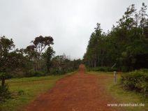 Der breite Wanderweg