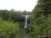Rainbow Falls im Norden der Nordinsel