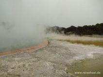 Champagne Pool in Wai-O-Tapu