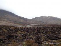 Erster Teil des Tongariro Alpine Crossings