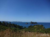 Aussicht beim Wandern zur Cathedral Cove