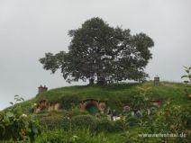 Hobbiton Nordinsel Neuseeland