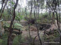 Gegrabenes Erdloch im Gumdiggers Park