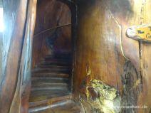 Treppe im Kauristamm
