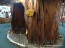 Riesiger ausgehöhlter Baumstamm