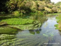 Grün- und Blautöne im Fluss