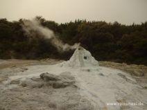 Geysir in Wai-O-Tapu im Ruhezustand