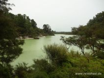 Ngakoro See in Wai-O-Tapu