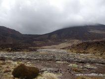 Aussicht auf Mount Tongariro und Ngauruhoe