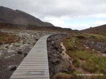 Wanderweg auf Stegen im Moor