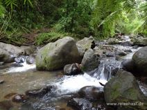 Querung des Maunawili Streams