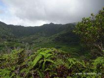 Aussicht auf die Manoa Ridge