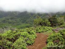 Kleines Plateau