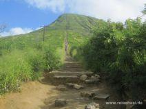 Koko Crater Trail auf O'ahu