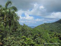 Ausblick vom Vallée de Mai auf Praslin
