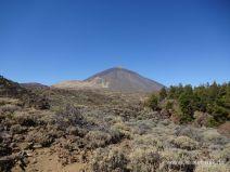 Ausblick auf den Teide
