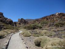 Weg mit Teide im Hintergrund