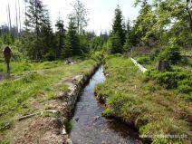Wasserlauf am Wegesrand