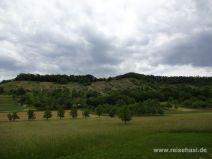 Weinberge und Wald