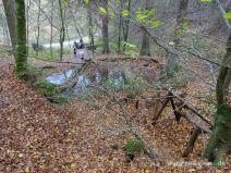Teich unterhalb der Schwamborn Quelle