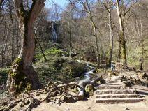 Treppen am Bad Uracher Wasserfall